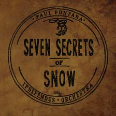 Seven Secrets of Snow