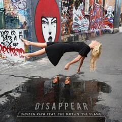 Disappear (feat. the Moth & the Flame)