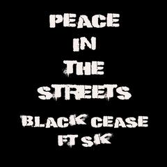 Peace in the Streets (feat. Sk)