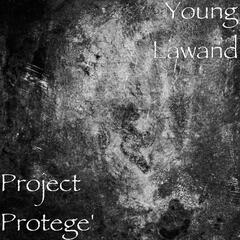 Project Protege'