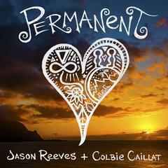 Permanent (feat. Colbie Caillat)