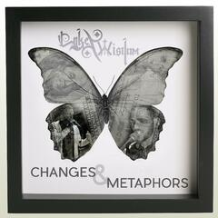 Changes and Metaphors