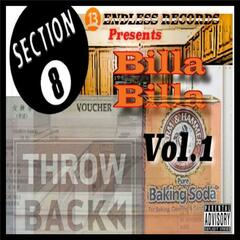 Section 8 Voucher Throwback, Vol. 1 (13endless Records Presents Billa Billa)