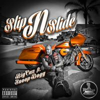 Slip & Slide (feat. Snoop Dogg)
