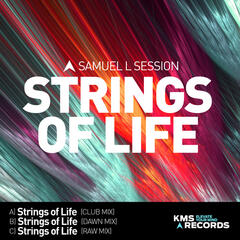 Strings Of Life 2015