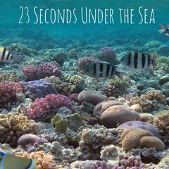 23 Seconds Under the Sea