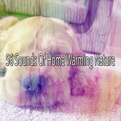 56 Sounds Of Home Warming Nature