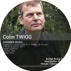 The Bridge String Quartet