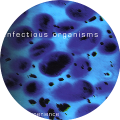 Infectious Organisms