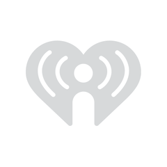 The Tailgaters