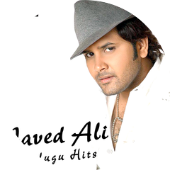Javed Ali, Sweekar