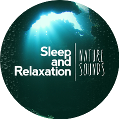 Nature Sounds for Sleep and Relaxation|Nature Sounds Nature Music|Sounds of Nature