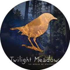 Twilight Meadow