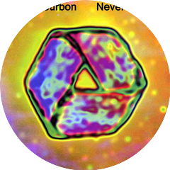 Billy Bourbon