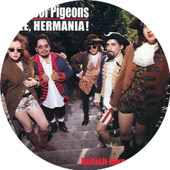 The Stool Pigeons