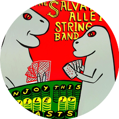 The Salvation Alley String Band