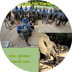 Thai Elephant Orchestra, Dave Soldier & Richard Lair