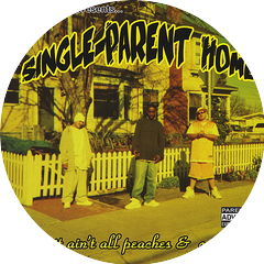 Single-Parent Home