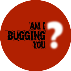 Am I Bugging You?