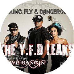 Young, Fly And Dangerous