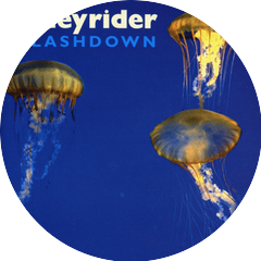 Honeyrider