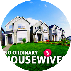 No Ordinary Housewives