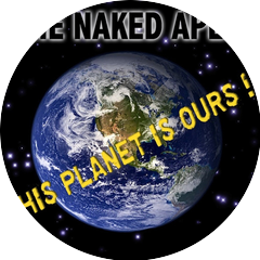 The Naked Apes