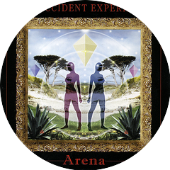 The Accident Experiment