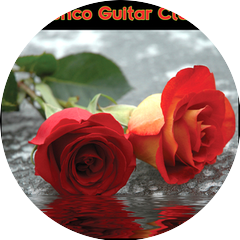 Flamenco Guitar Masters