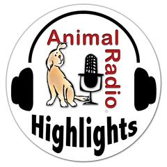 Animal Radio - Highlights
