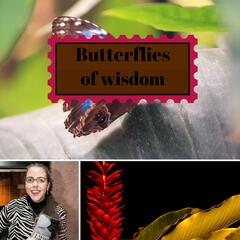 Butterflies of Wisdom