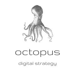 Octopus Digital Strategy