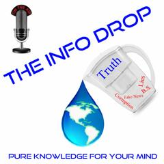 The Info Drop