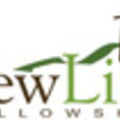 New Life Fellowship Podcast