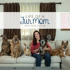 Life of a Fur Mom with Julie Tristan