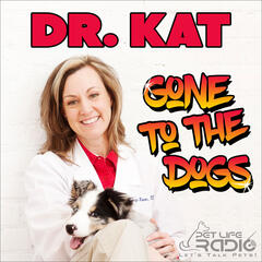 Dr. Kat Gone to the Dogs on Pet Life Radio (PetLifeRadio.com)