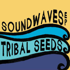 Soundwaves (feat. Eric Rachmany of Rebelution)