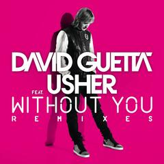 Without You (feat. Usher) [Nicky Romero Remix]