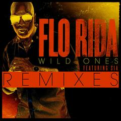 Wild Ones (feat. Sia) [Guy Scheiman Vocal Remix]