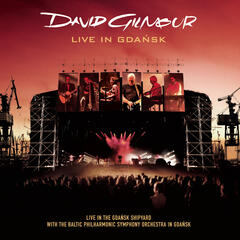 Comfortably Numb (Live In Gdansk - Audio)