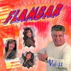 Flambar, Vol. 11
