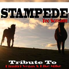 Stampede: Tribute to Dimitri Vegas & Like Mike