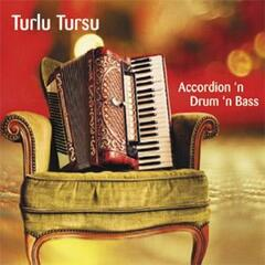 Accordion 'n drum 'n bass