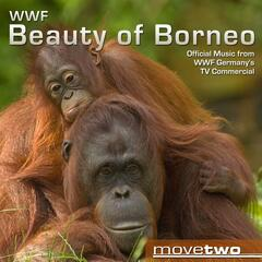WWF Beauty of Borneo