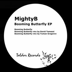 Booming Butterfly