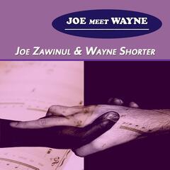 Joe Meet Wayne
