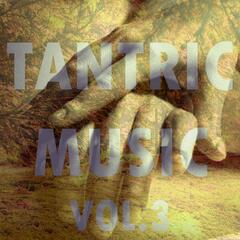 Tantric Music, Vol. 3