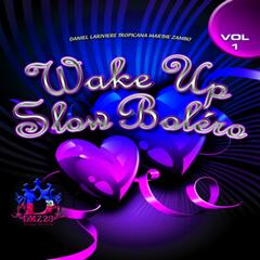 Wake Up Slow Bolero, Vol. 1