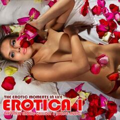 Erotica, Vol. 1 - The Erotic Moments Of Life