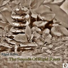 Touch Africa Music Pres.Sounds Of Rigid Roots